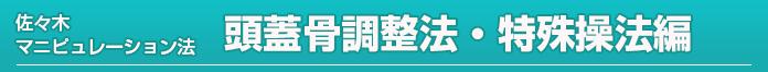 佐々木マニュピレーション法<頭蓋骨調整法・特殊操法編>