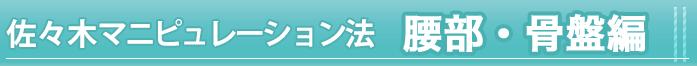 佐々木マニュピレション法<腰部・骨盤編>